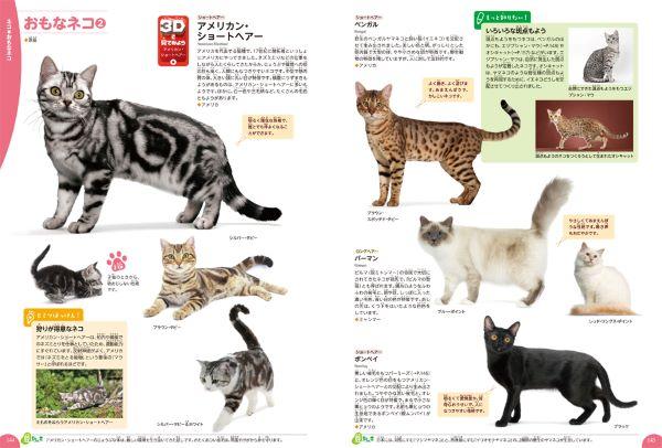 20191210_animal_sub3.jpg