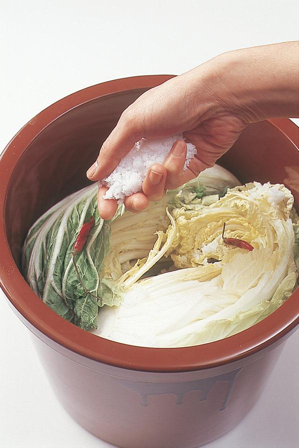 白菜漬けは、白菜・塩・赤トウガラシだけで作ることができる