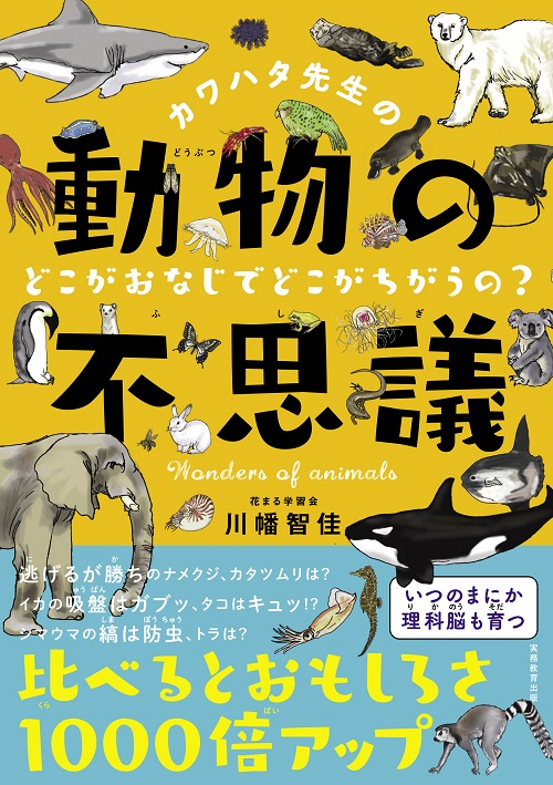 カワハタ先生の動物の不思議 どこがおなじでどこがちがうの?のコピー.jpg