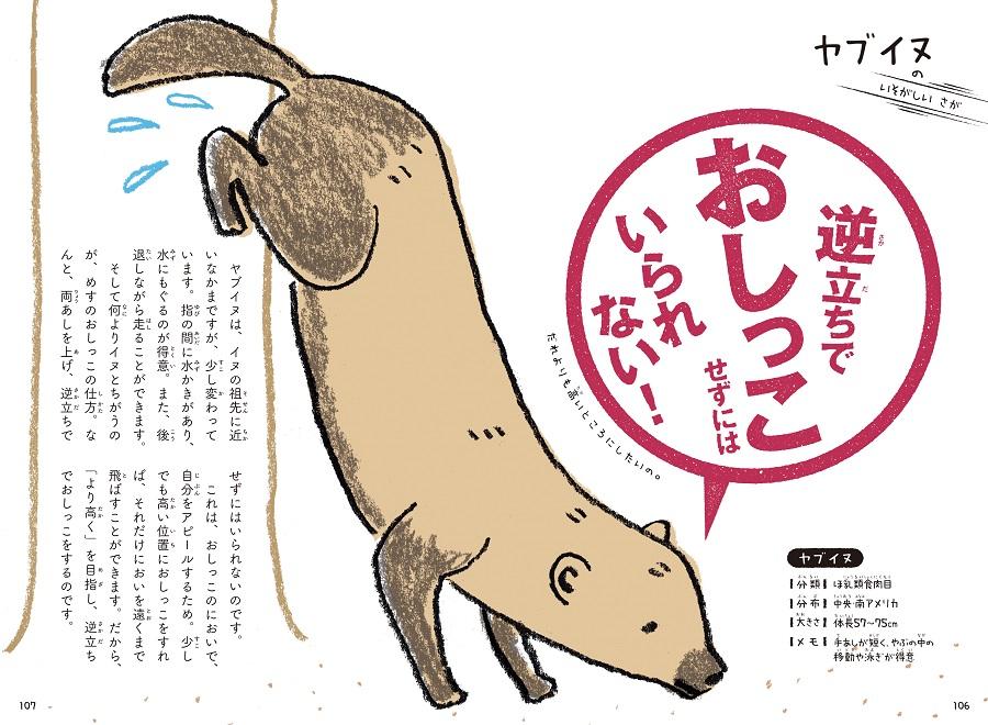 写真は、ヤブイヌの習性を解説するページ/『これをせずにはいられない! 動物たちの悲しき習性図鑑』(学研プラス)より