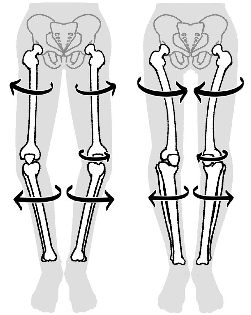 画像は、『ひざのねじれをとれば、ひざ痛は治る』(方丈社)より。豊富なイラストでわかりやすい