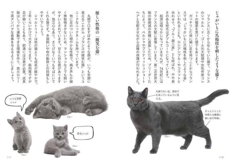 画像は、『世界中で愛される美しすぎる猫図鑑』(大和書房)より。「じゃがいもに爪楊枝を刺したような猫」...!?