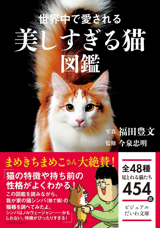 画像は、『世界中で愛される美しすぎる猫図鑑』(大和書房)