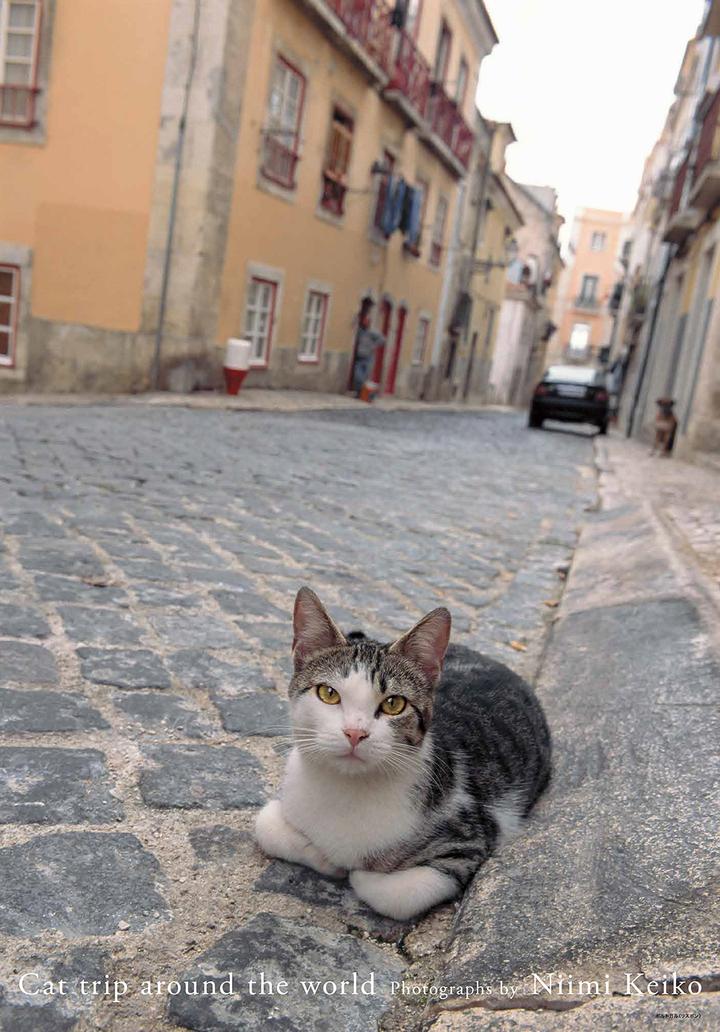 リスボンの中心地、ケーブルカーに乗り終点で降りると、そこにいたのは......