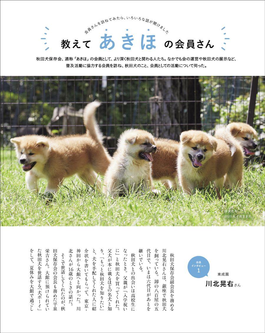 20210328_秋田犬と5.jpg
