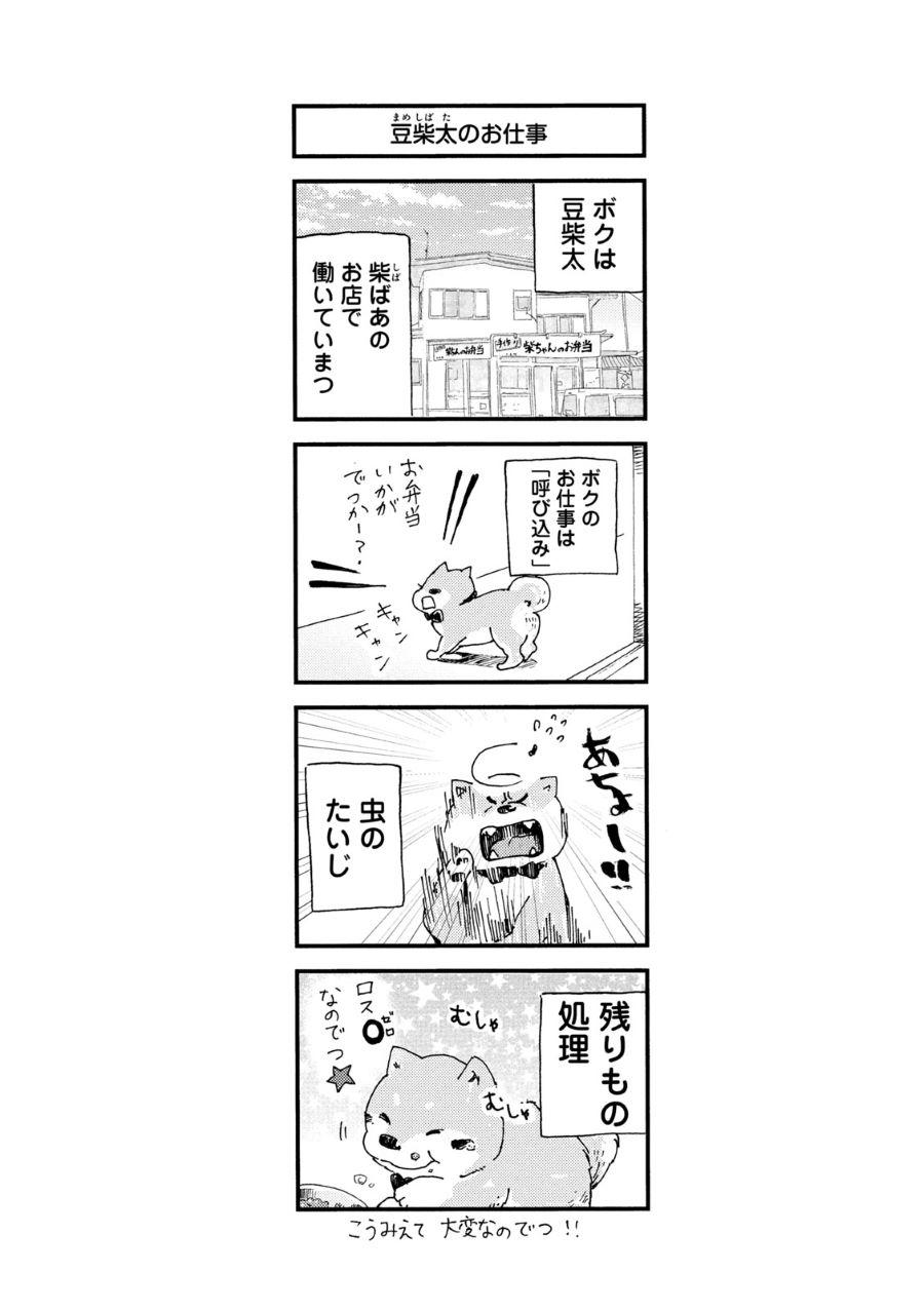 20210307_柴ばあと豆柴太5.jpg
