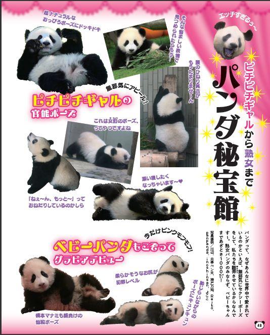 写真は「思わずムフフなパンダ秘宝館」(提供:光文社)
