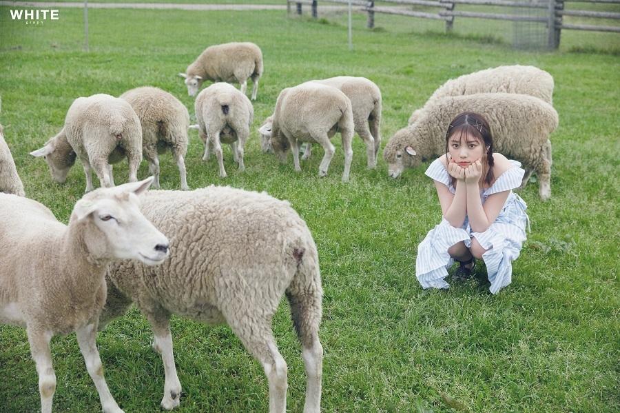 写真は羊たちのなかに座る与田さん(提供:講談社)