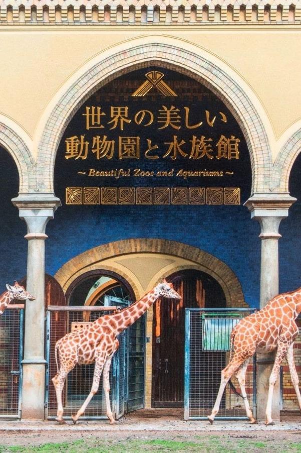 宮殿に併設、巨大アクリルガラス。こんな動物園&水族館、見たことある?